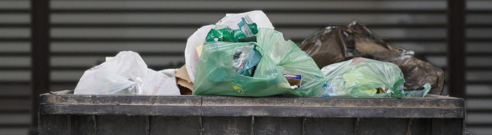 Do Bin Rentals Include Disposal?
